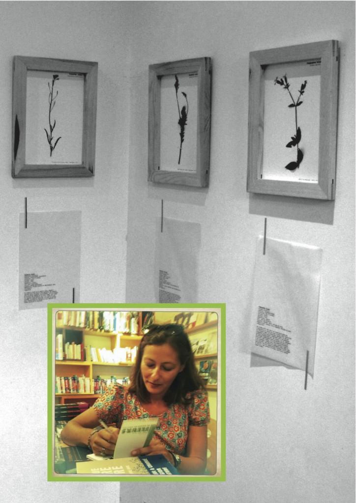 Image herbier signature
