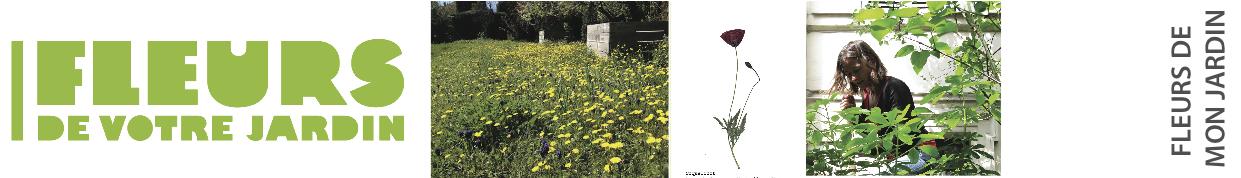 bandeau herbier jardin